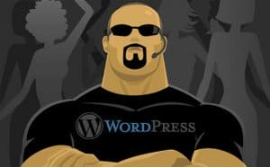 10_ways_to_prevent_your_wordpress_website_from_being_hacked_2